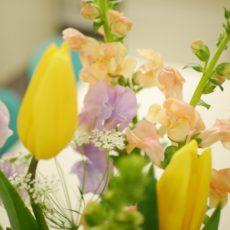 今月のお花✿  3月になりましたが^^