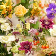 今月のお花✿