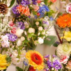 今月のお花🌹