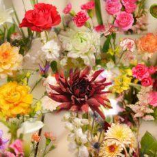 今月のお花🌷