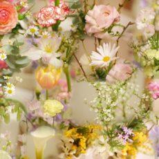 今月のお花🌸