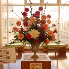 県産花きの展示🌼