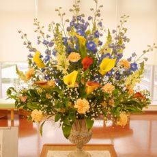 県産花きの展示🌸【11月】