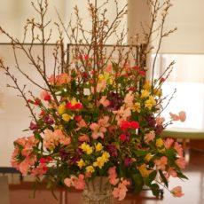 県産花きの展示🌸【1月】